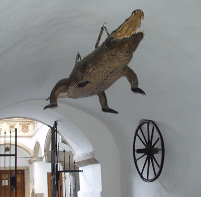 Старая ратуша Бненский дракон и колесо